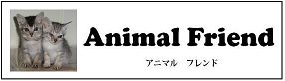 animal friend banner
